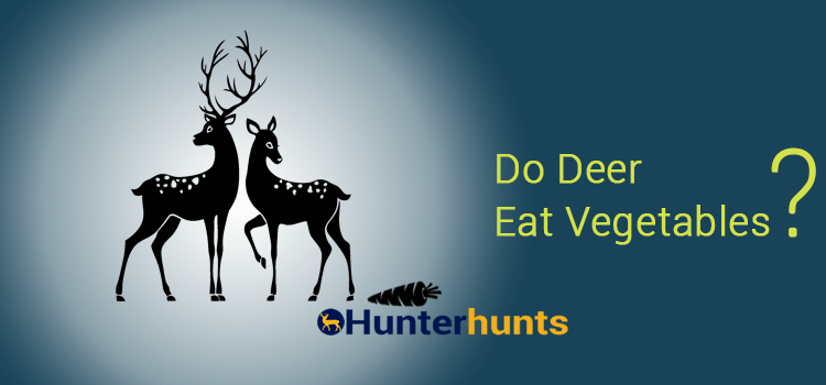Do Deer Eat Vegetables