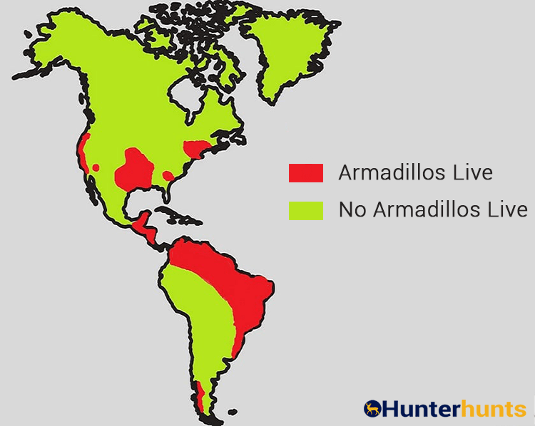 Where Do Armadillos Live Map